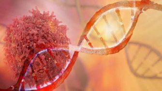 Motivul pentru care se dezvolta celulele canceroase. Ce trebuie sa faci ca sa le elimini
